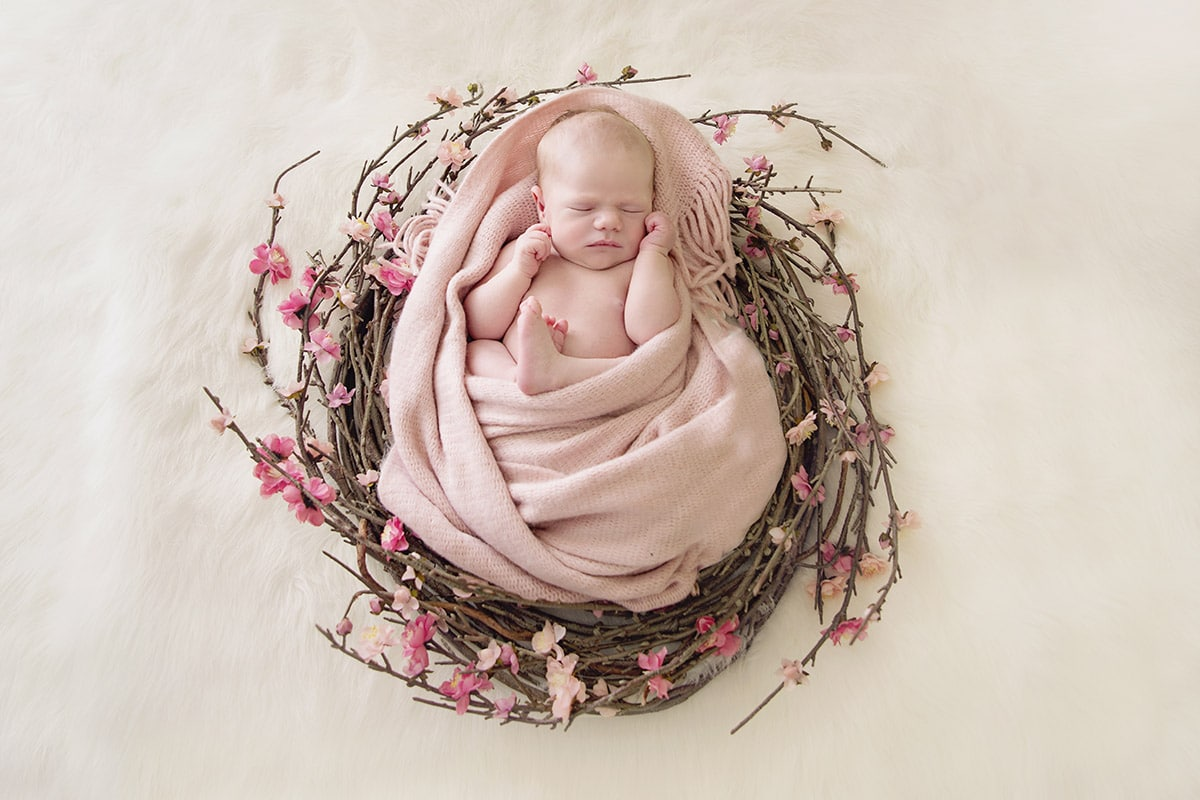 gerringong-newborn-photographer-orla-smith-photography